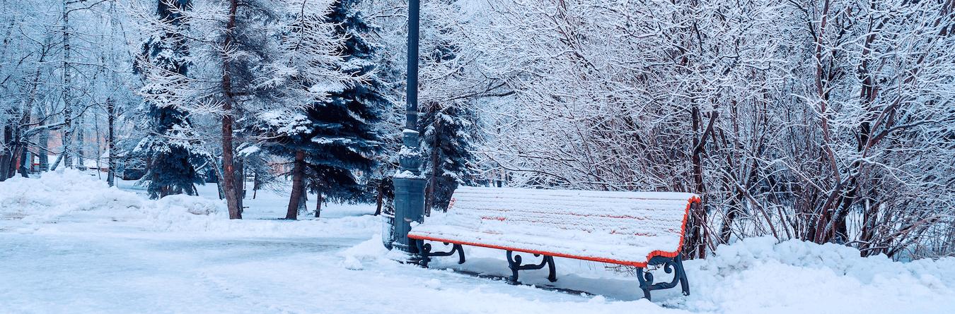 winter park bench